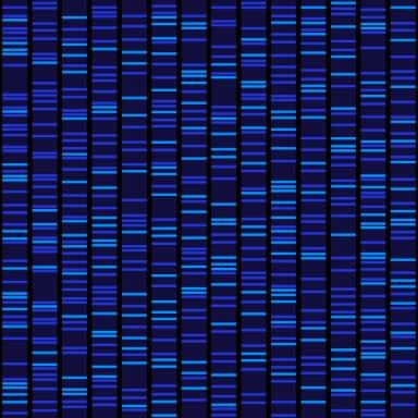 El ADN: huella digital de la vida
