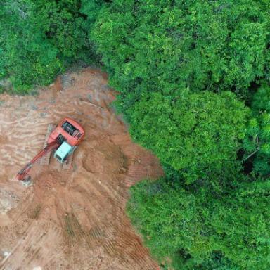 Biomas, clima y biodiversidad